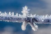 imagine winter